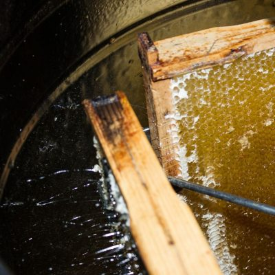 Waben in der Honigschleuder